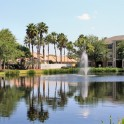Apartments East Lake Oldsmar